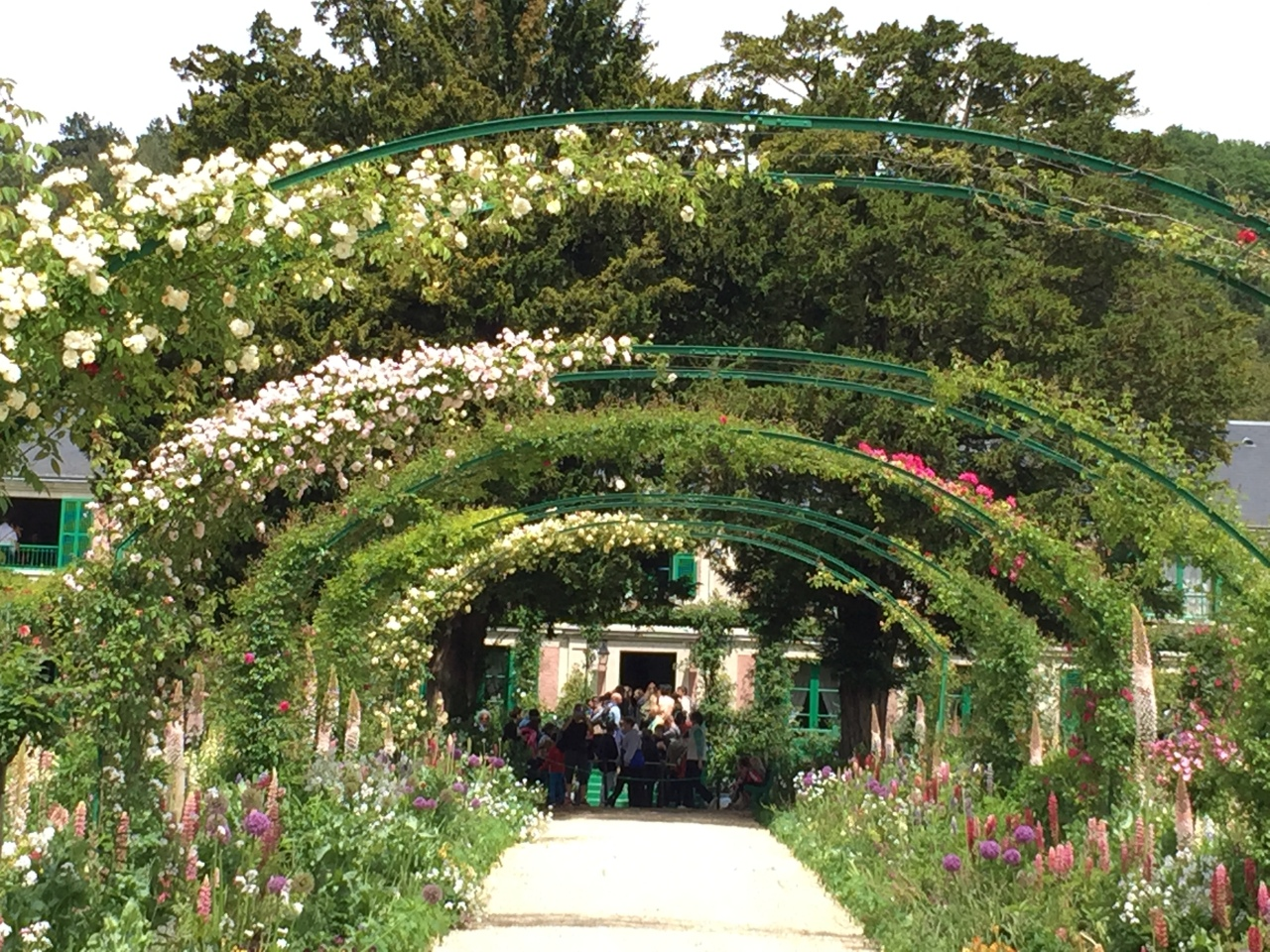 Monet's Garden 莫內花園